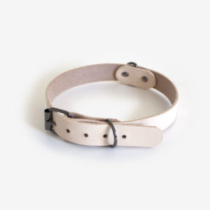 10237-dog-collar-small-veg-1