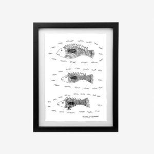 20432-euraba-A4-three-fish