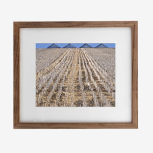 22034-howard-10x8withmat-Plantings