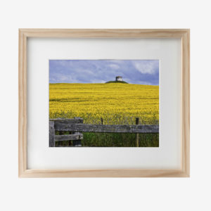 22036-howard-10x8withmat-Yellow-As-The-Day